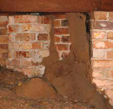 Golden Pacific Termite finds all termite mud shelter tunnels and kills the termites.